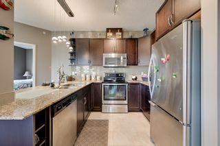 Photo 13: 409 7021 SOUTH TERWILLEGAR Drive in Edmonton: Zone 14 Condo for sale : MLS®# E4259067