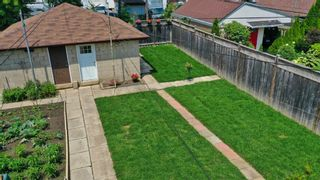 Photo 61: 262 Ryding Ave in Toronto: Junction Area Freehold for sale (Toronto W02)  : MLS®# W4544142