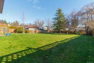 Photo 16: 17 Tovey Cres in : VR View Royal House for sale (View Royal)  : MLS®# 782341