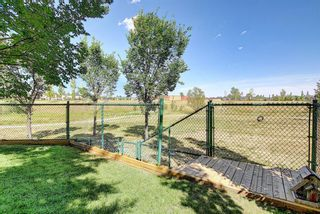 Photo 49: 188 SPRINGMERE Way: Chestermere Detached for sale : MLS®# A1136892