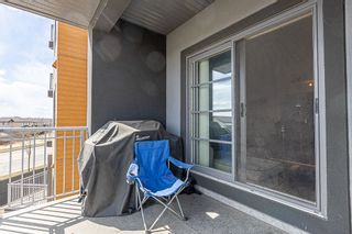 Photo 13: 233 503 ALBANY Way in Edmonton: Zone 27 Condo for sale : MLS®# E4240556