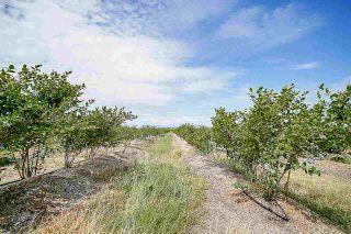 Photo 3: 16397 40 Avenue in Surrey: Serpentine Land for sale (Cloverdale)  : MLS®# R2586709
