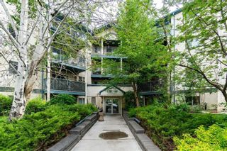 Photo 17: 105 21 Dover Point SE in Calgary: Dover Apartment for sale : MLS®# A1097393