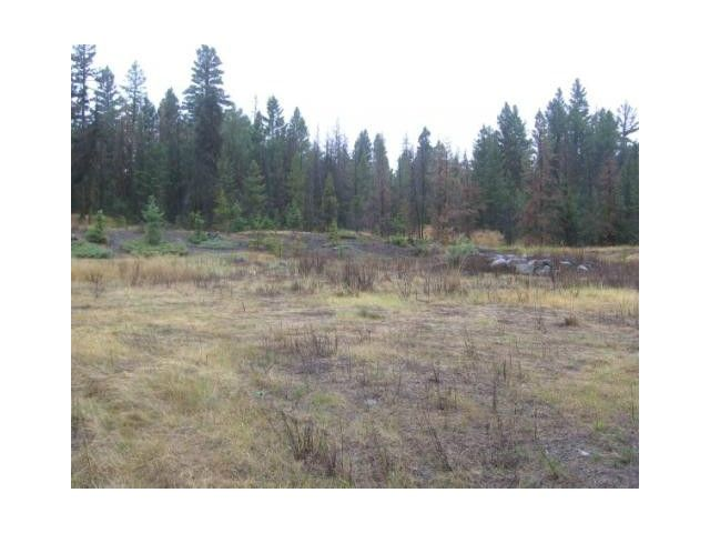 Photo 4: Photos: 1537 CHASM Road: 70 Mile House Land for sale (100 Mile House (Zone 10))  : MLS®# N232330