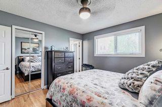 Photo 26: 8419 52 Street in Edmonton: Zone 18 House for sale : MLS®# E4246813