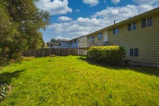 "Photo 5: 11037 84A Avenue in Delta: Nordel House for sale in ""Nordel"" (N. Delta)  : MLS®# R2453643"