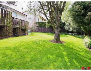 """Photo 10: 19719 50A Ave in Langley: Langley City House for sale in """"Eagle Heights"""" : MLS®# F2708352"""