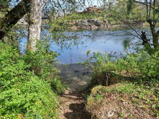 Photo 8: 5350 Falls St in : PA Alberni Valley Land for sale (Port Alberni)  : MLS®# 873438