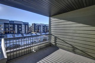 Photo 47: 2305 1317 27 Street SE in Calgary: Albert Park/Radisson Heights Apartment for sale : MLS®# A1060518