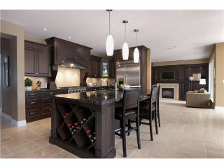 Photo 3: 14567 CHARLIER Road in Pitt Meadows: North Meadows House for sale : MLS®# V1007695