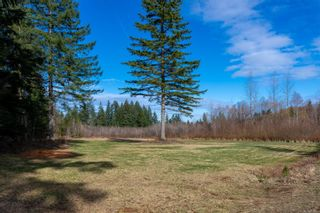 Photo 45: 3815 Woodland Dr in : CR Campbell River South House for sale (Campbell River)  : MLS®# 871197
