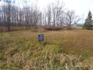 Photo 4: 4088 Dalrymple Drive in Ramara: Rural Ramara Property for sale : MLS®# X3305263