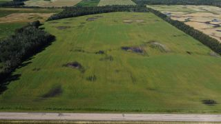 Photo 3: Twp 474 Hwy 795: Rural Wetaskiwin County Rural Land/Vacant Lot for sale : MLS®# E4211589