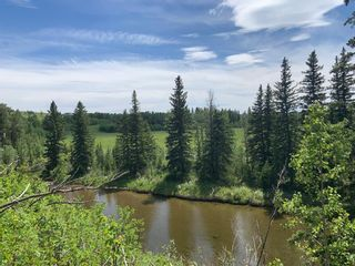 Photo 45: 30457 Rge Rd 44: Rural Mountain View County Detached for sale : MLS®# A1124513