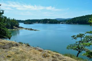 Photo 21: 1095 Nose Point Rd in : GI Salt Spring Land for sale (Gulf Islands)  : MLS®# 881923