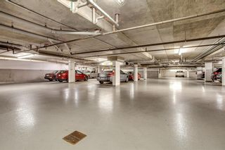 Photo 25: 317 30 Discovery Ridge Close SW in Calgary: Discovery Ridge Apartment for sale : MLS®# A1125482