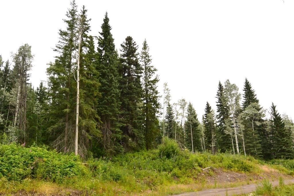 """Main Photo: LOT 13 GRANTHAM Road in Smithers: Smithers - Rural Land for sale in """"Grantham"""" (Smithers And Area (Zone 54))  : MLS®# R2604020"""