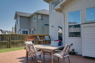 Photo 48: 160 Brightonstone Gardens SE in Calgary: New Brighton Detached for sale : MLS®# A1009065