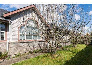 Photo 18: 6509 188TH STREET in Surrey: Cloverdale BC House for sale (Cloverdale)  : MLS®# R2053566