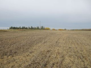 Photo 26: 55101 RR 270: Rural Sturgeon County Rural Land/Vacant Lot for sale : MLS®# E4265205