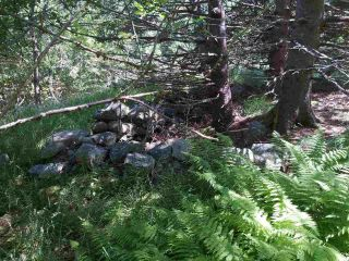Photo 9: Lots Shore Road in Churchover: 407-Shelburne County Vacant Land for sale (South Shore)  : MLS®# 202011924