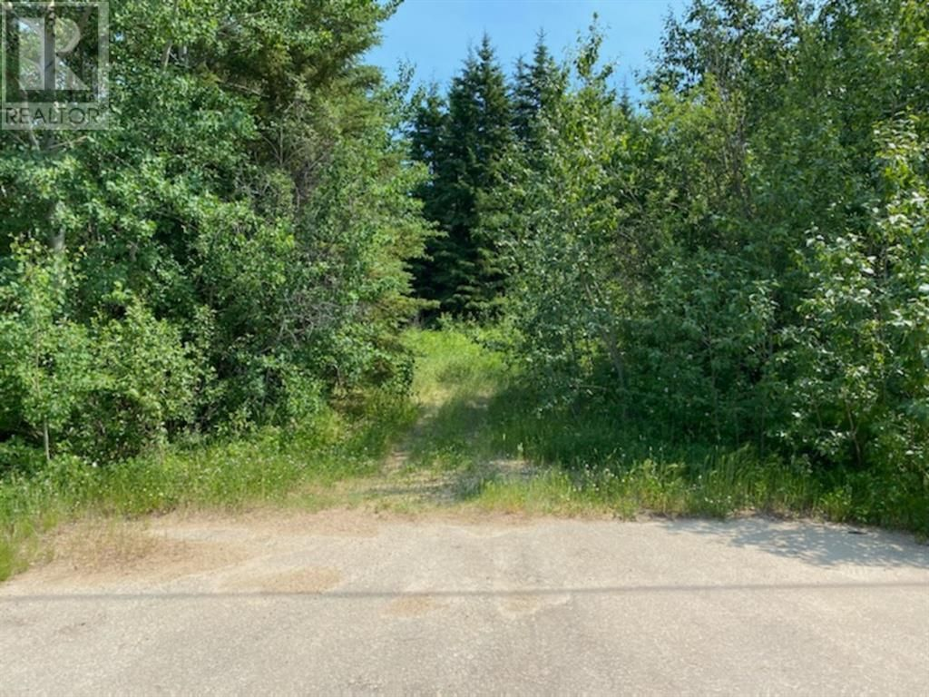 Main Photo: 2607 gooseberry lane in Wabasca: Vacant Land for sale : MLS®# A1125211