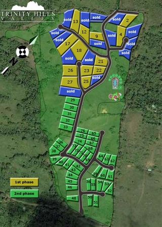 Photo 5: Trinity Hills Valley - Lot for Sale