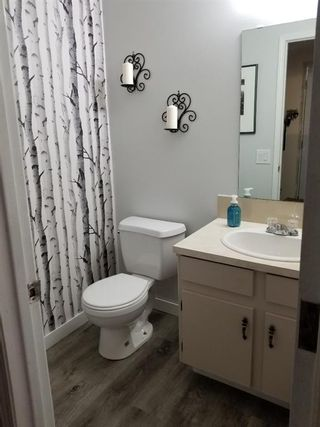 Photo 11: 19 Erin Grove Court SE in Calgary: Erin Woods Detached for sale : MLS®# A1105312