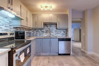 Photo 10: 563 Aboyne Crescent NE in Calgary: Abbeydale Semi Detached for sale : MLS®# A1071517