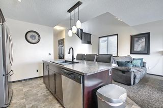 Photo 21: 2047 Reunion Boulevard NW: Airdrie Detached for sale : MLS®# A1095720