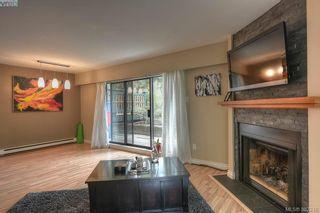 Photo 12: 116 3277 Quadra St in VICTORIA: SE Maplewood Condo for sale (Saanich East)  : MLS®# 768023