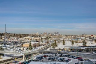 Photo 16: 711 8710 HORTON Road SW in Calgary: Haysboro Apartment for sale : MLS®# A1071641