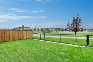 Photo 43: 137 Redstone Common NE in Calgary: Redstone Semi Detached for sale : MLS®# A1132067