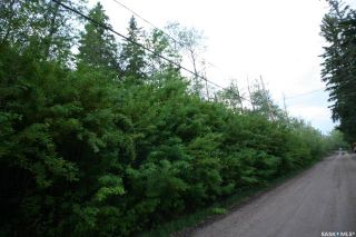 Photo 2: 156 Carwin Park Drive in Emma Lake: Lot/Land for sale : MLS®# SK846952
