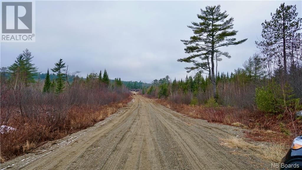 Main Photo: Lot #5 Route 740 in Heathland: Vacant Land for sale : MLS®# NB053418