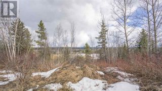 Photo 14: 2455 PARENT ROAD in Prince George: Vacant Land for sale : MLS®# R2548505