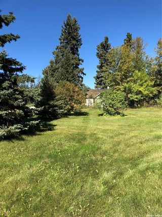 Photo 15: 117 Central Avenue in Love: Residential for sale : MLS®# SK870039