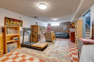Photo 10: 2611 6 Street NE in Calgary: Winston Heights/Mountview Detached for sale : MLS®# A1146720