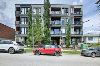 Photo 37: 304 414 MEREDITH Road NE in Calgary: Crescent Heights Apartment for sale : MLS®# A1119417