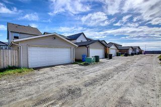 Photo 41: 168 SKYVIEW SPRINGS Gardens NE in Calgary: Skyview Ranch Detached for sale : MLS®# A1093077