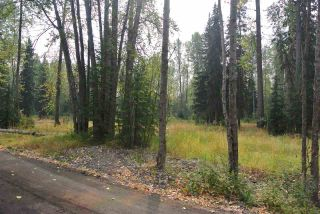 Photo 3: LOT 1 & A RIVERSIDE Drive in Smithers: Smithers - Town Land for sale (Smithers And Area (Zone 54))  : MLS®# R2566862