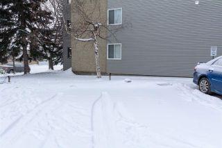 Photo 45: 107 6208 180 Street in Edmonton: Zone 20 Condo for sale : MLS®# E4228584