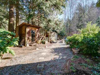 Photo 19: 3172 MOSSY ROCK Road: Roberts Creek House for sale (Sunshine Coast)  : MLS®# R2346720