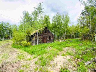 Photo 38: 454064 RGE RD 275: Rural Wetaskiwin County House for sale : MLS®# E4246862