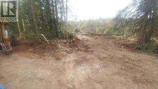 Photo 6: 3820 GOLDMAN ROAD in Quesnel: Vacant Land for sale : MLS®# R2612418