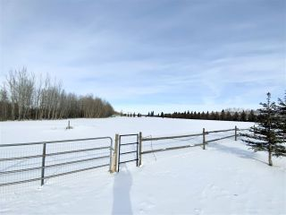 Photo 27: 2-471082 RR 242A: Rural Wetaskiwin County House for sale : MLS®# E4228215