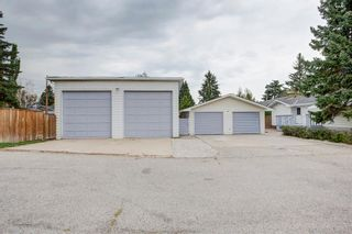 Photo 4: 9839 7 Street SE in Calgary: Acadia Detached for sale : MLS®# A1145363
