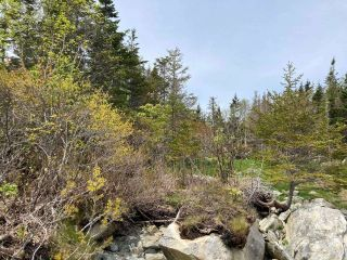 Photo 21: Lot Mushaboom Road in Mushaboom: 35-Halifax County East Vacant Land for sale (Halifax-Dartmouth)  : MLS®# 202114485