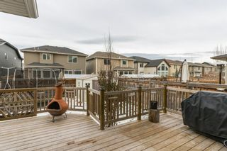 Photo 38: 56 AUBURN SHORES Manor SE in Calgary: Auburn Bay Detached for sale : MLS®# A1052787
