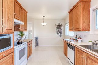 Photo 13: 9213 162 Street in Edmonton: Zone 22 House for sale : MLS®# E4264714